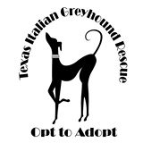 Texas Italian Greyhound Rescue