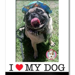 i love my dog frame