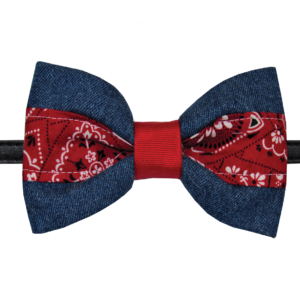 pawsitively sweet bakery bowtie