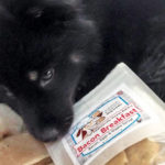 PAWsitively Sweet Bakery dog fan