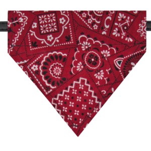 pawsitively sweet bakery bandana